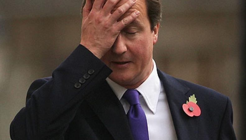 проколы Кэмерона прикрыла история со свиньей