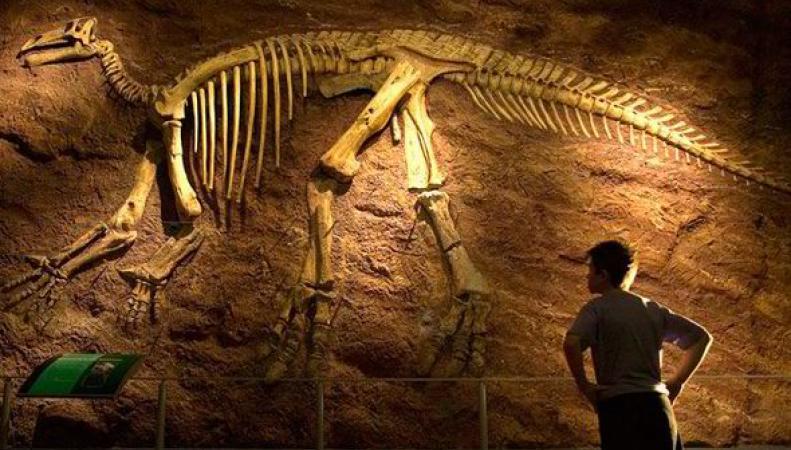 динозавры на британских островах