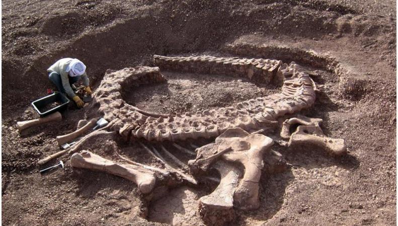 Останки динозавров, обнаруженные в Мексике