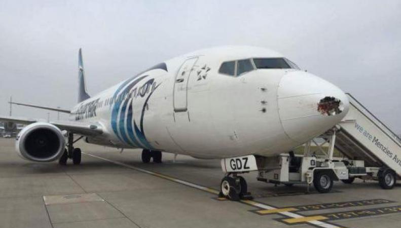 самолет EgyptAir после инцидента