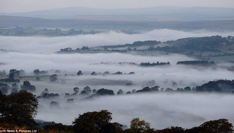 туман над рекой Тайн