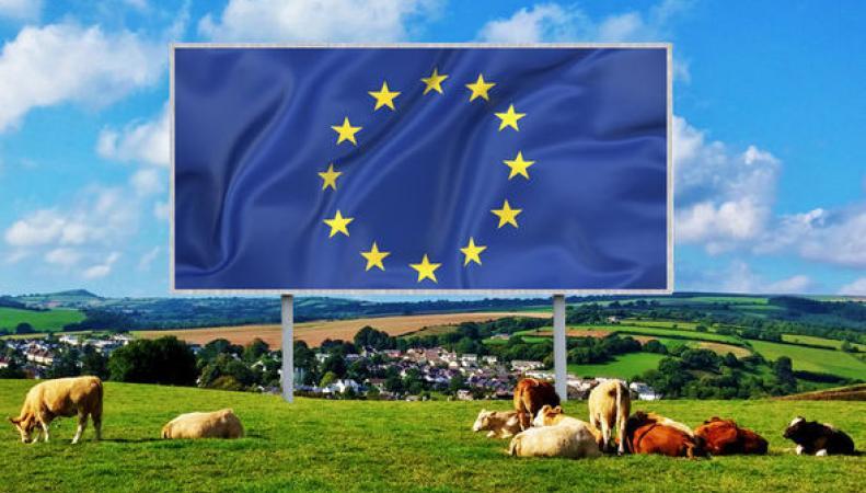 флаг ЕС на британском поле