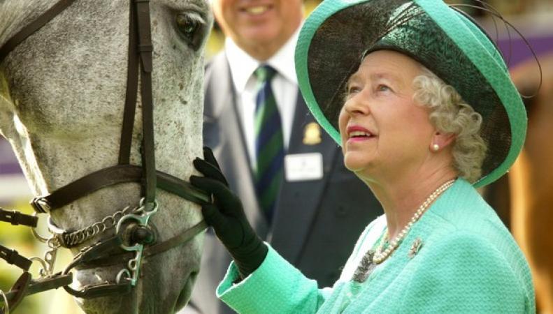 У лошади британской королевы нашли допинг