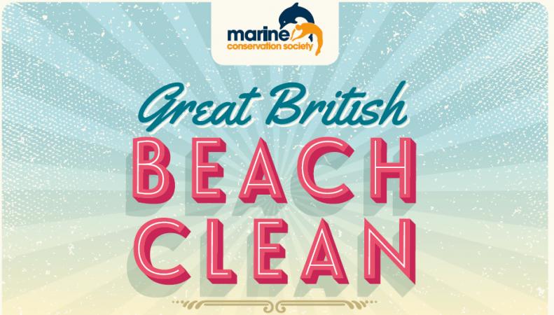генеральная уборка пляжей