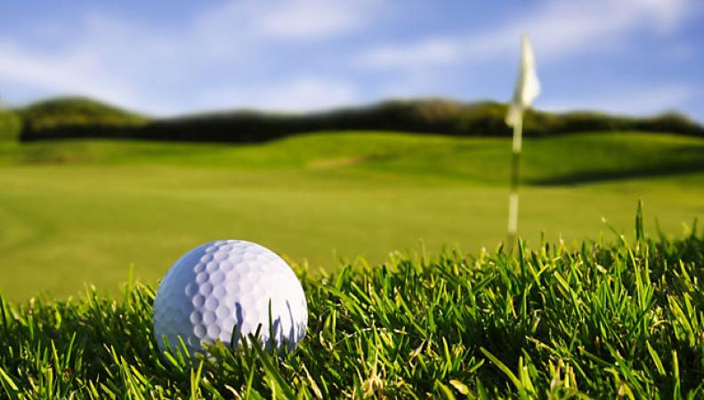 В элитном гольф-клубе найден труп на дереве