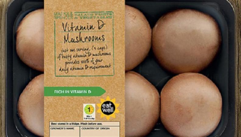 Грибы с большим содержанием витамина D