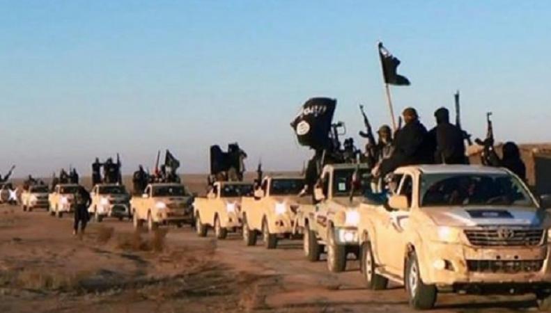 С 2011 года в рядах ИГИЛ воевали 20 тысяч иностранцев