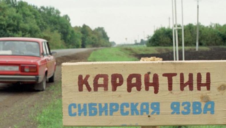 Узбекистан, сибирская язва