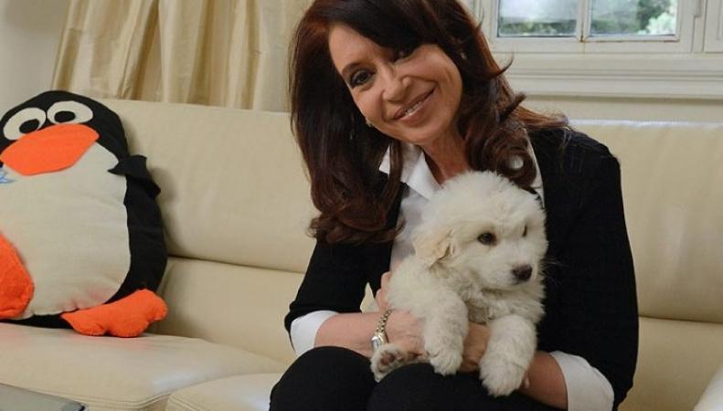 Президенту Аргентины диагностировано воспаление кишечника, она проходит лечение, http://mir24.net