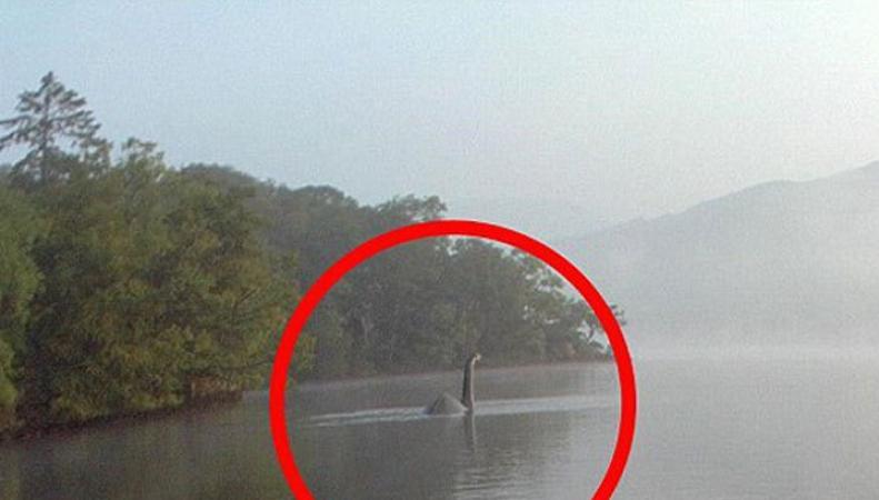 Лох-несское чудовище, Англия, озеро Уиндермир