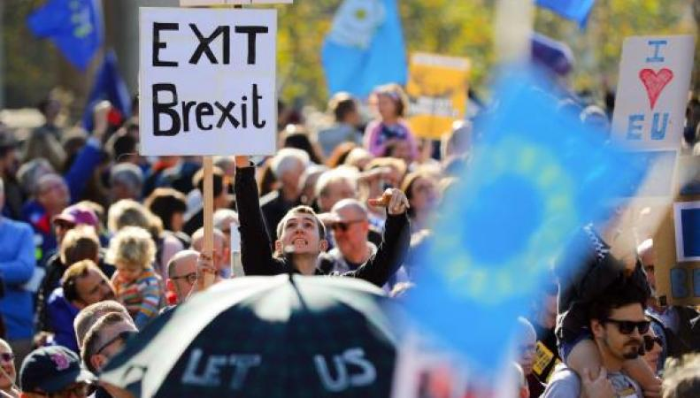 """Плакат """"Выйти из Брекзита"""""""