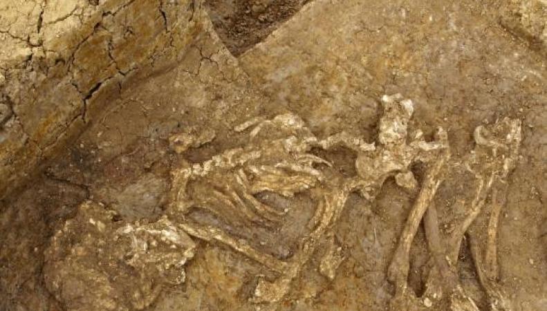 Древние британцы мумифицировали своих мертвых
