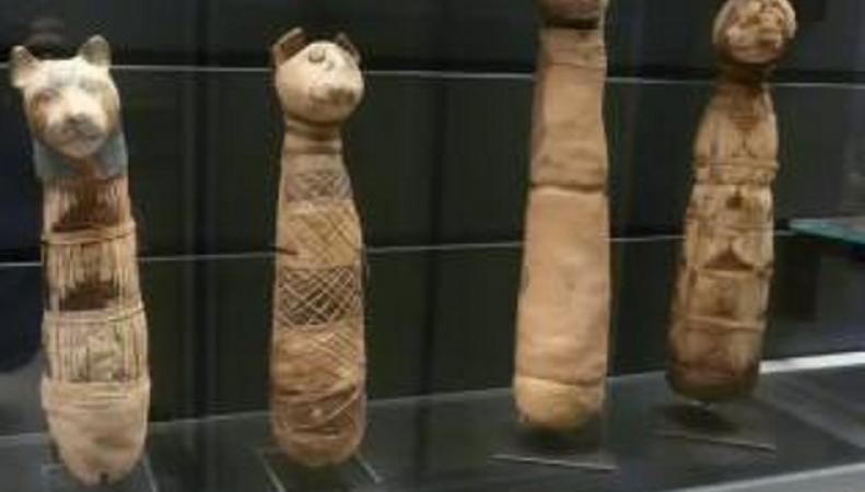 Обнаруженные поддельные мумии
