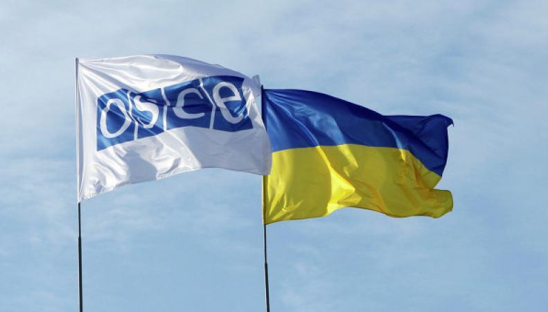 ОБСЕ, Украина