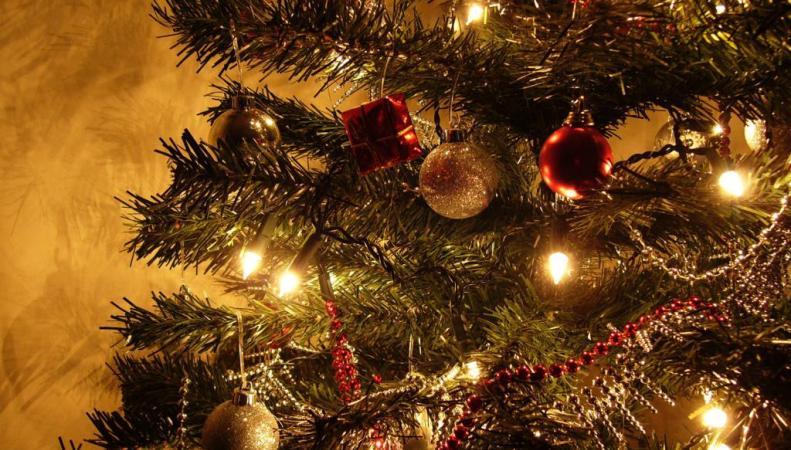 Рождественская елка из Москвы установлена в Париже, http://wallpampers.ru/