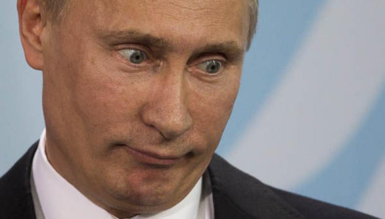 Коров в России будут кормить французскими сырами