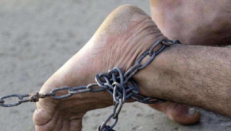 Литовцы пожаловались на рабские условия труда