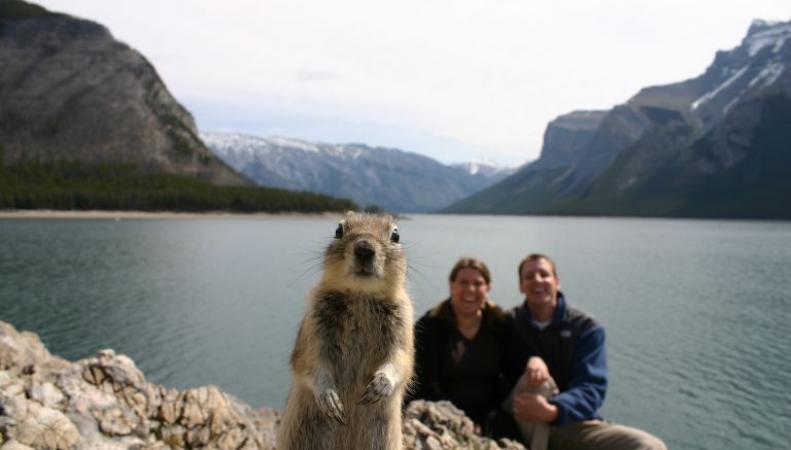 Самая счастливая фотография в мире выявлена опросом