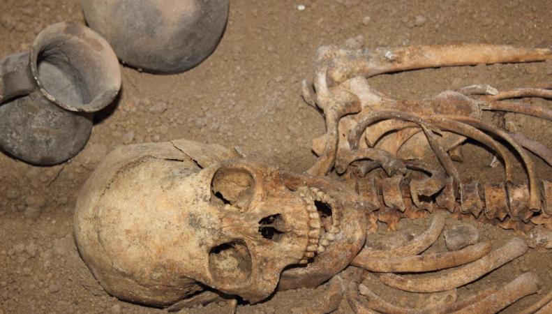 обнаруженный скелет принадлежал Олафу Гутфритссону, который был королем викингов в Йорвике и в Дублине