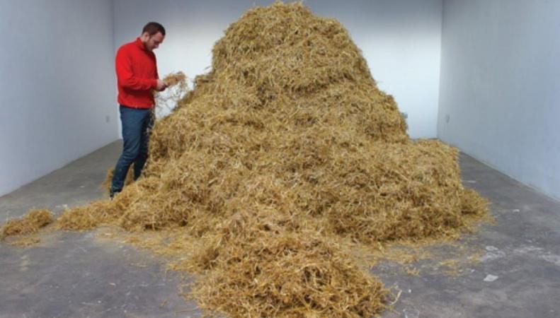 Мужчина нашел иголку в стоге сена