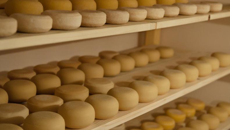 Белоруссия имеет возможность увеличить поставки сыра в Россию