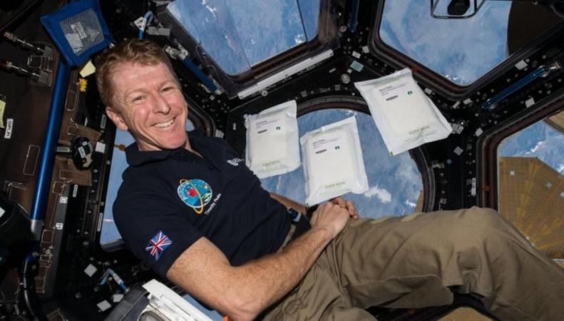 Тим Пик - первый астронавт из Великобритании