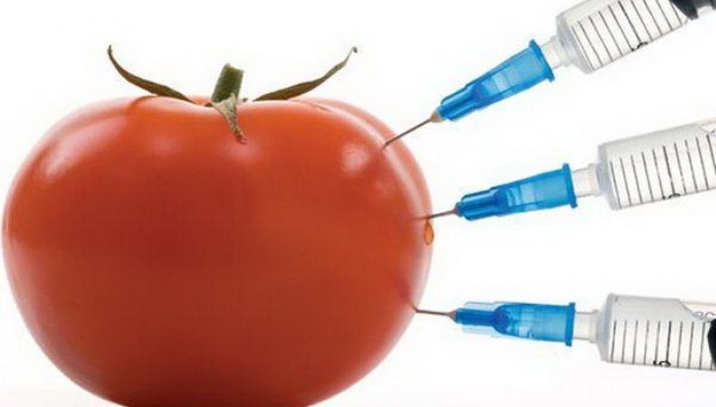 Ученые из Британии вывели сорт томатов, замедляющих старение