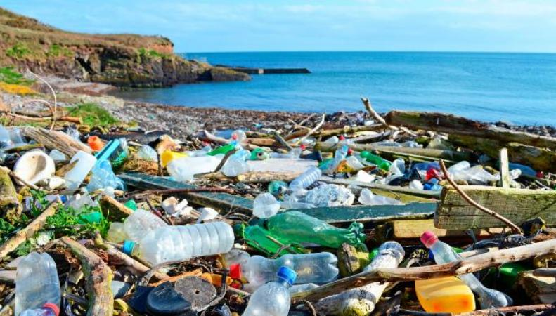 пластиковый мусор на берегу