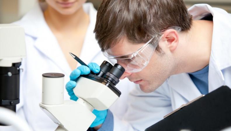 Британские учёные сняли на видео как атакуются  раковые клетки