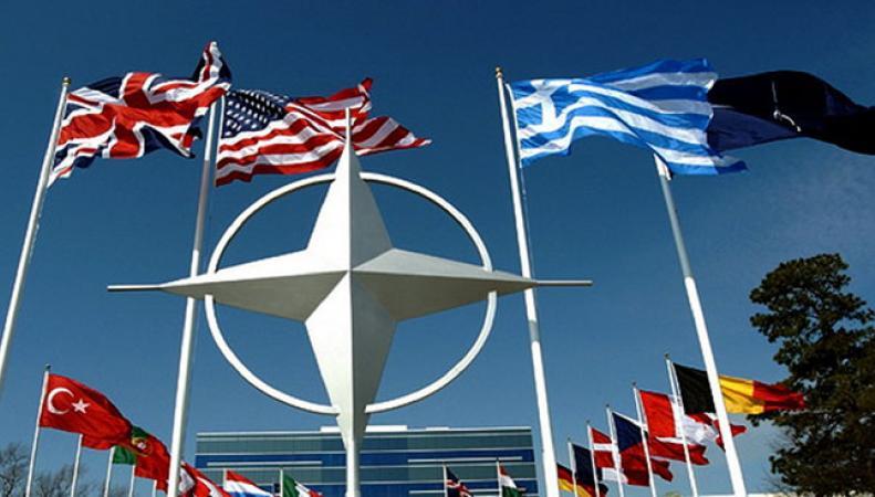 Москва прокомментировала призыв НАТО к Германии и Турции