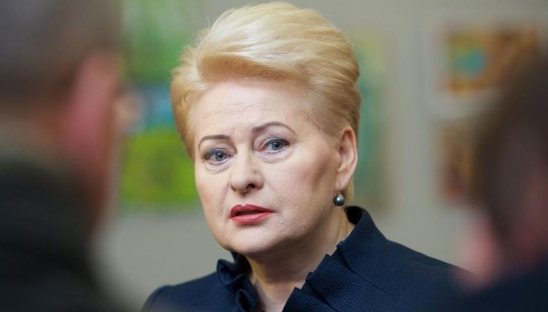 Меркель обещает Литве поддержку ввопросе стандартов безопасности наБелАЭС