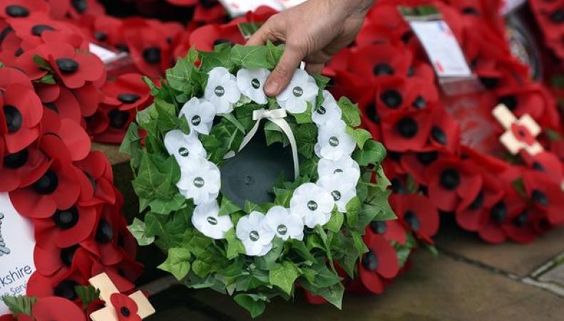 Символические маки в Дни памяти в Великобритании сменили цвет фото:theguardian.com