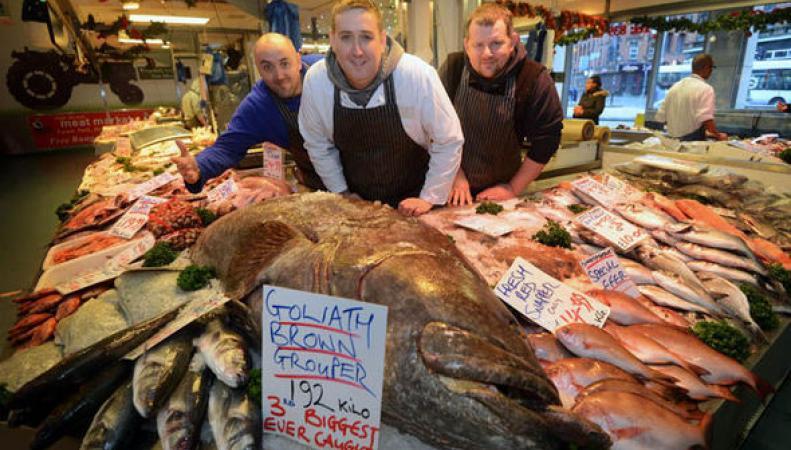 Самая большая рыба, которую видели в Манчестере когда-либо