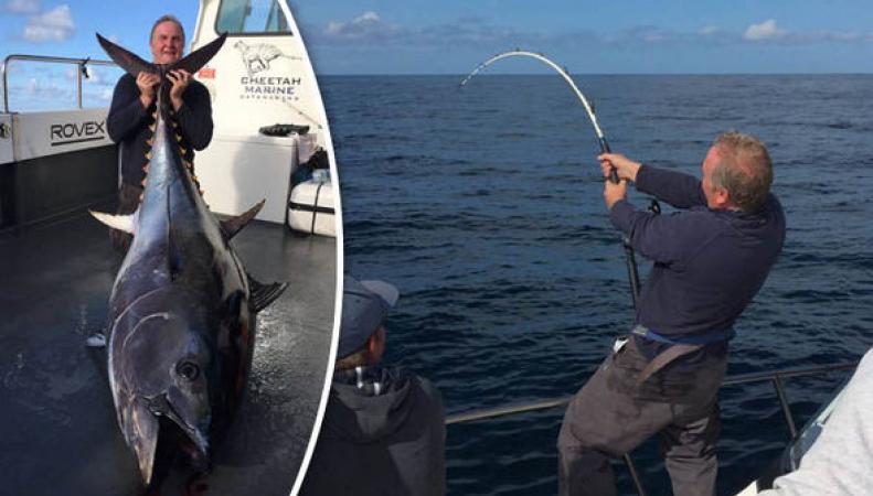 В акватории Уэльса выловили огромного тунца фото:express