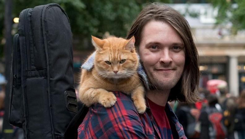 Полная история города Лондона в котиках фото:londonist.com