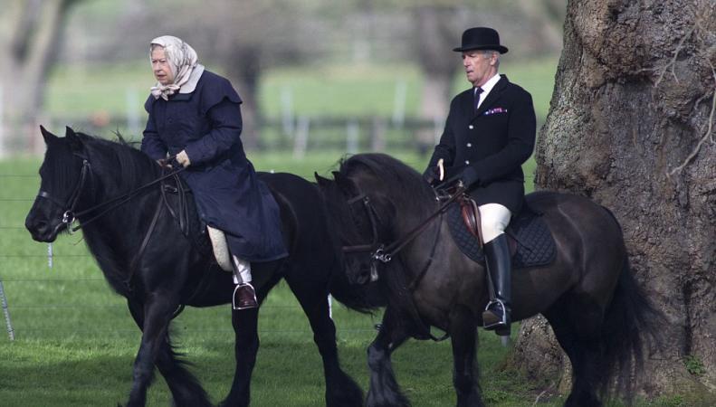 Королева Елизавета II замечена на конной прогулке в парке фото:dailymail