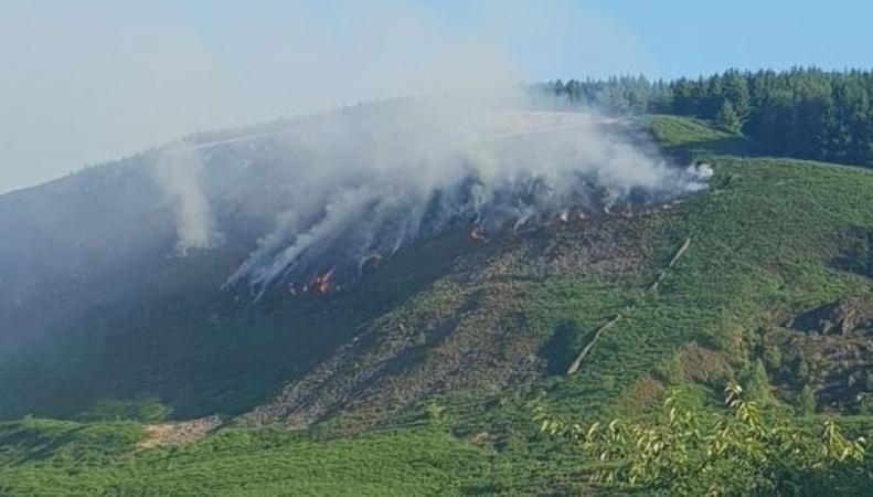В Уэльсе занялись лесные пожары