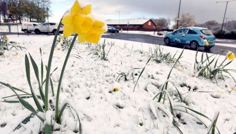 Днем, открытка в апреле выпал снег