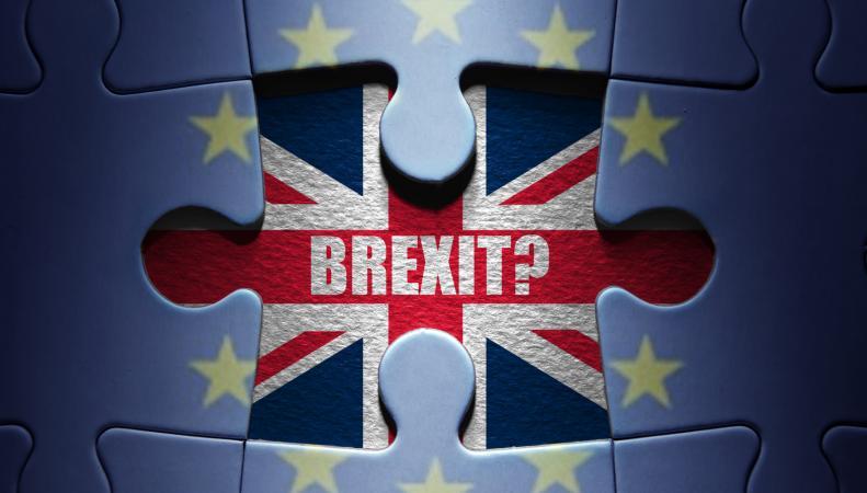 Противники референдума попытались «вскочить в последний вагон» с протестной петицией фото:mirror.co.uk