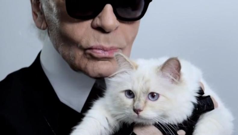 Лагерфельд и его кошка