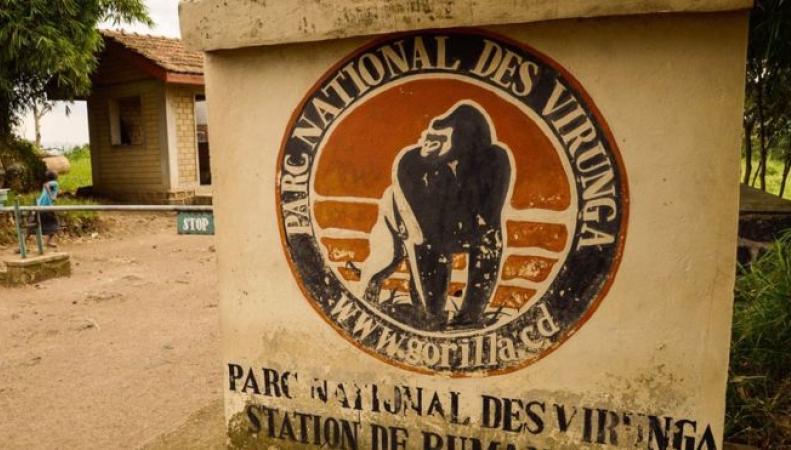 Власти Конго ищут похищенных британских туристов