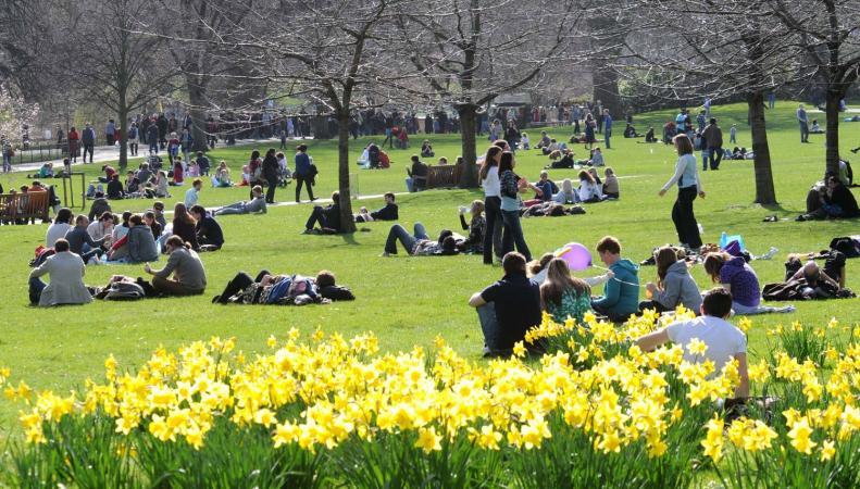 MetOffice обещает самый теплый февральский день за всю историю метеонаблюдений
