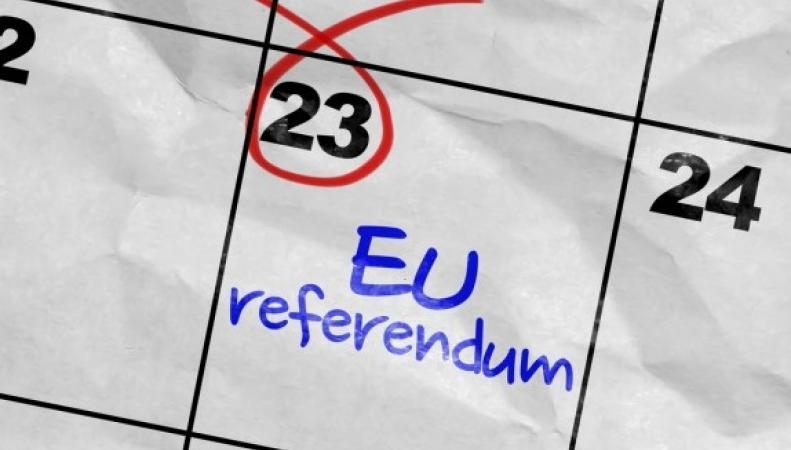 Британские суды отказали экспатам в праве на участие в референдуме фото:blog.angloinfo.com