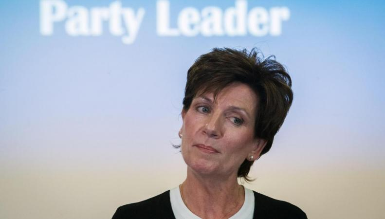 Лидер партии UKIP ушла в отставку через восемнадцать дней после назначения на пост фото:independent.co.uk