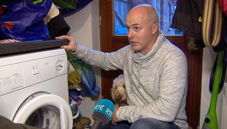 В графстве Даун собака спасла ребенка из работающего сушильного автомата фото:bbc.com