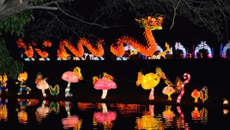 Открыта продажа билетов на Фестиваль китайских фонариков в Чизике фото:londonist.com