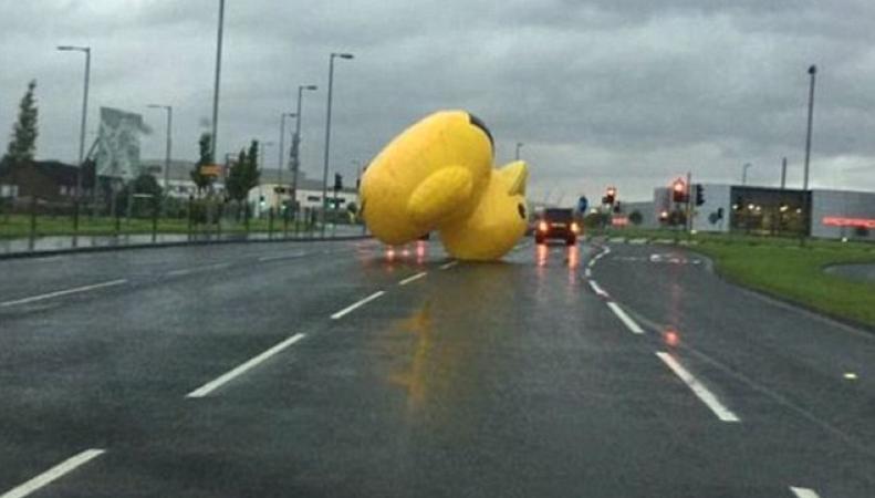 Гигантская резиновая уточка шокировала автомобилистов в Глазго фото:dailymail.co.uk