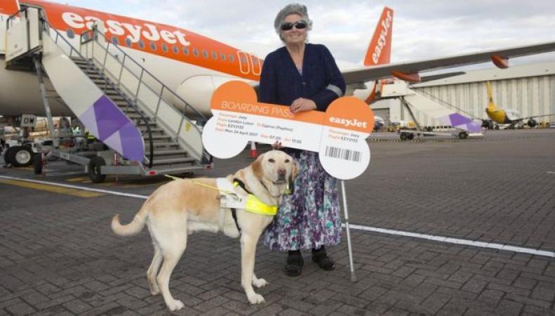 EasyJet ввел почетное звание часто летающего пассажира среди животных фото:bbc