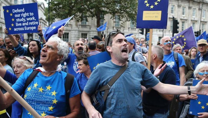 Партия с программой Stop Brexit могла бы на выборах обойти лейбористов фото:independent.co.uk