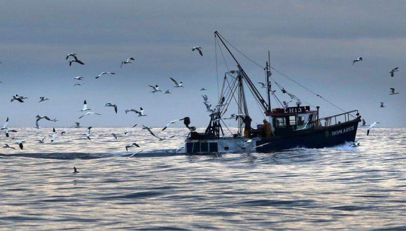 Великобритания выйдет из международного соглашения о рыболовстве фото:bbc